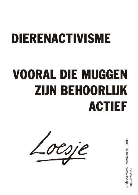 Loesje V D Posters On Twitter Urkomische Zitate Niederlandische Zitate Zitate