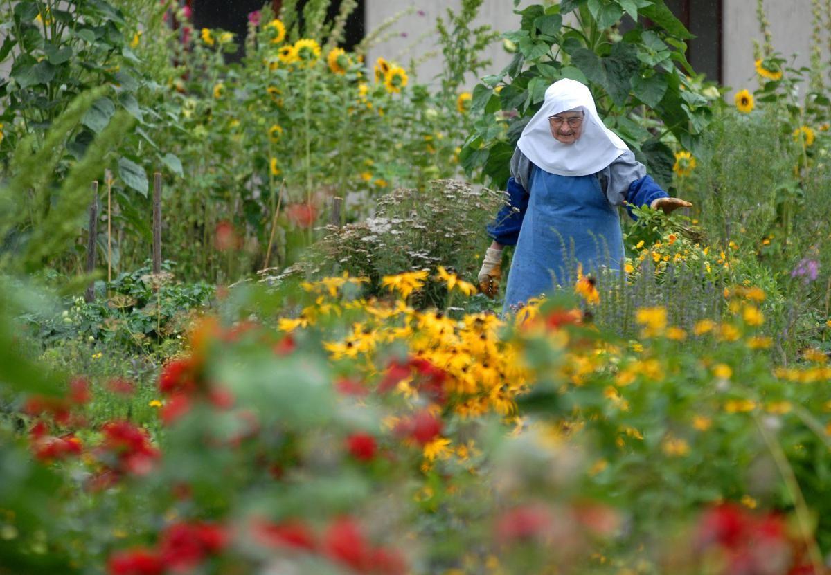 Garten Abtei Fulda Kloster Garten Gartenzeitschrift