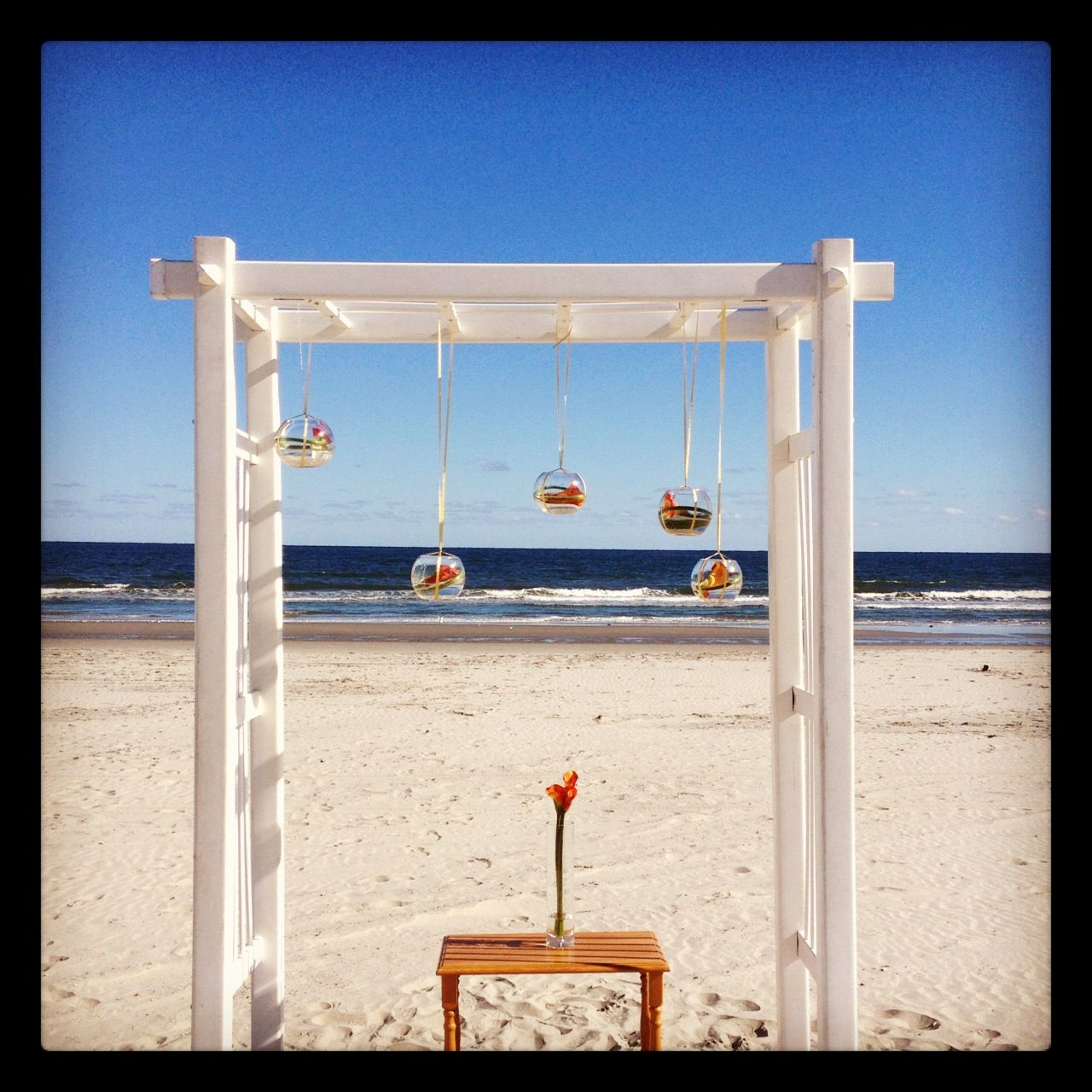 Night Beach Wedding Ceremony Ideas: Stone Harbor Beach Ceremony Arbor. Set Up And Decor By