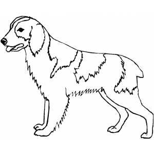 dog color pages printable walking dog coloring page