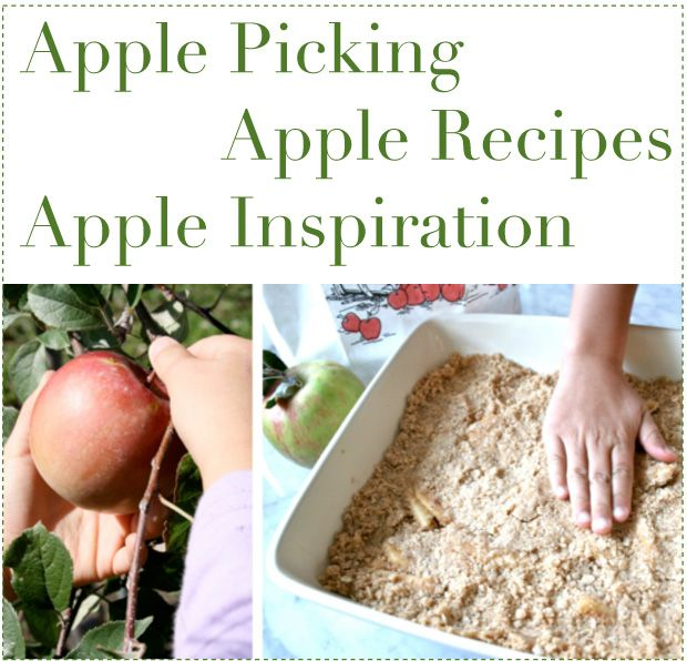 I love apple picking season! Apples, Apples & More Apples from Playful Learning.