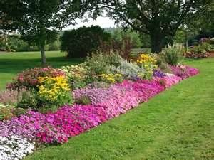 Long boarder garden, love the pinks.