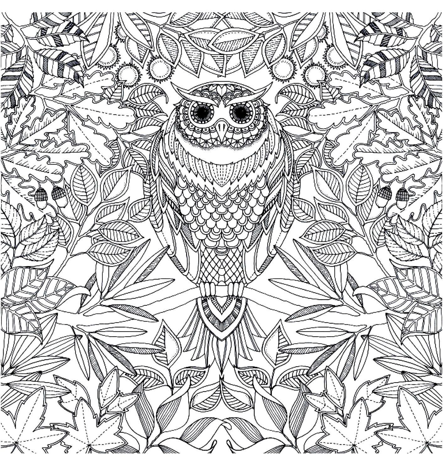 Galerie de coloriages gratuits coloriage adulte hibou - Coloriage d adulte a imprimer ...