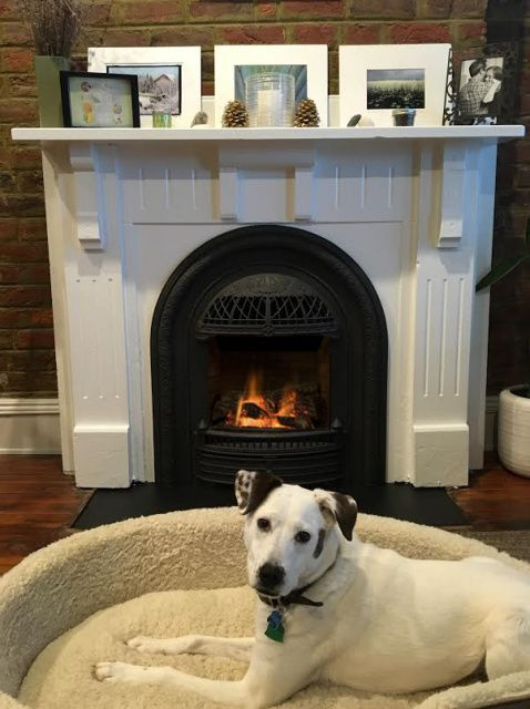 The WINDSOR can be used as a fireplace system for new construction