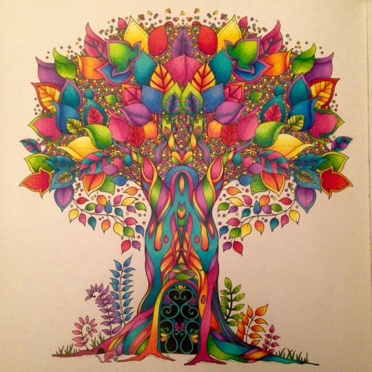 Johanna Basford Colouring Gallery Johanna Basford Coloring Enchanted Forest Coloring Book Basford Coloring