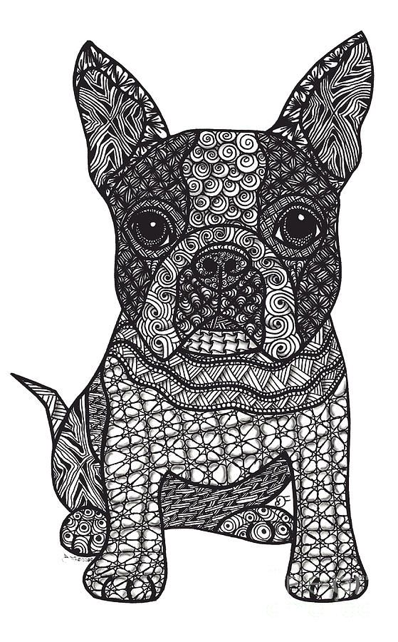 Zentangle Dogs Boston Terrier Art Dog Coloring Page Zentangle Drawings