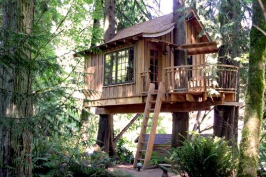 This treehouse plan will help you build a      x      treehouse    This treehouse plan will help you build a      x      treehouse supported by two trees    TREE HOUSES   Pinterest   Treehouse  Hardware and Trees