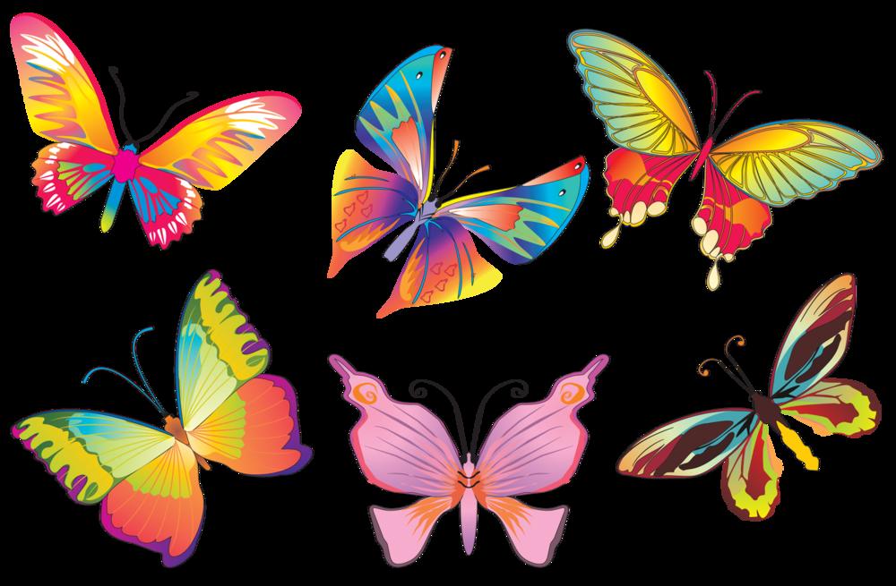 Картинки много бабочек для детей, днем рождения для