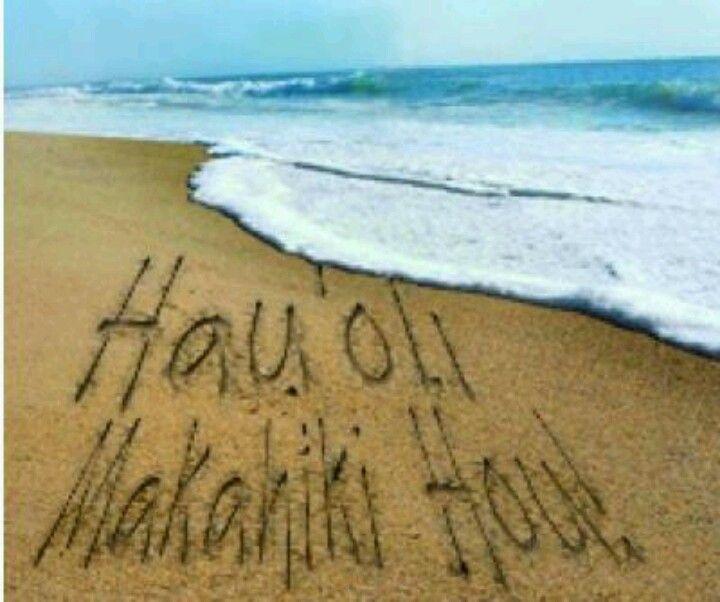 hauoli makahiki hou happy new year hawaiian style