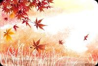 Fall autumn email backgrounds. Autumn Leaves Falling