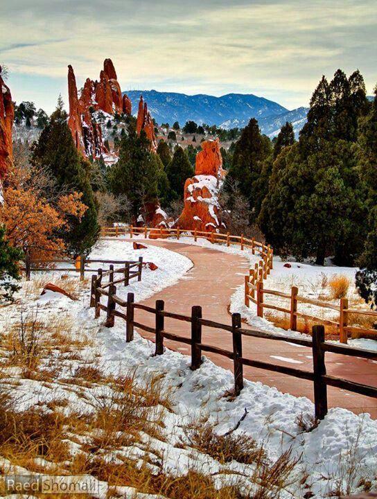 Snowy in the Garden of the Gods, Colorado Springs