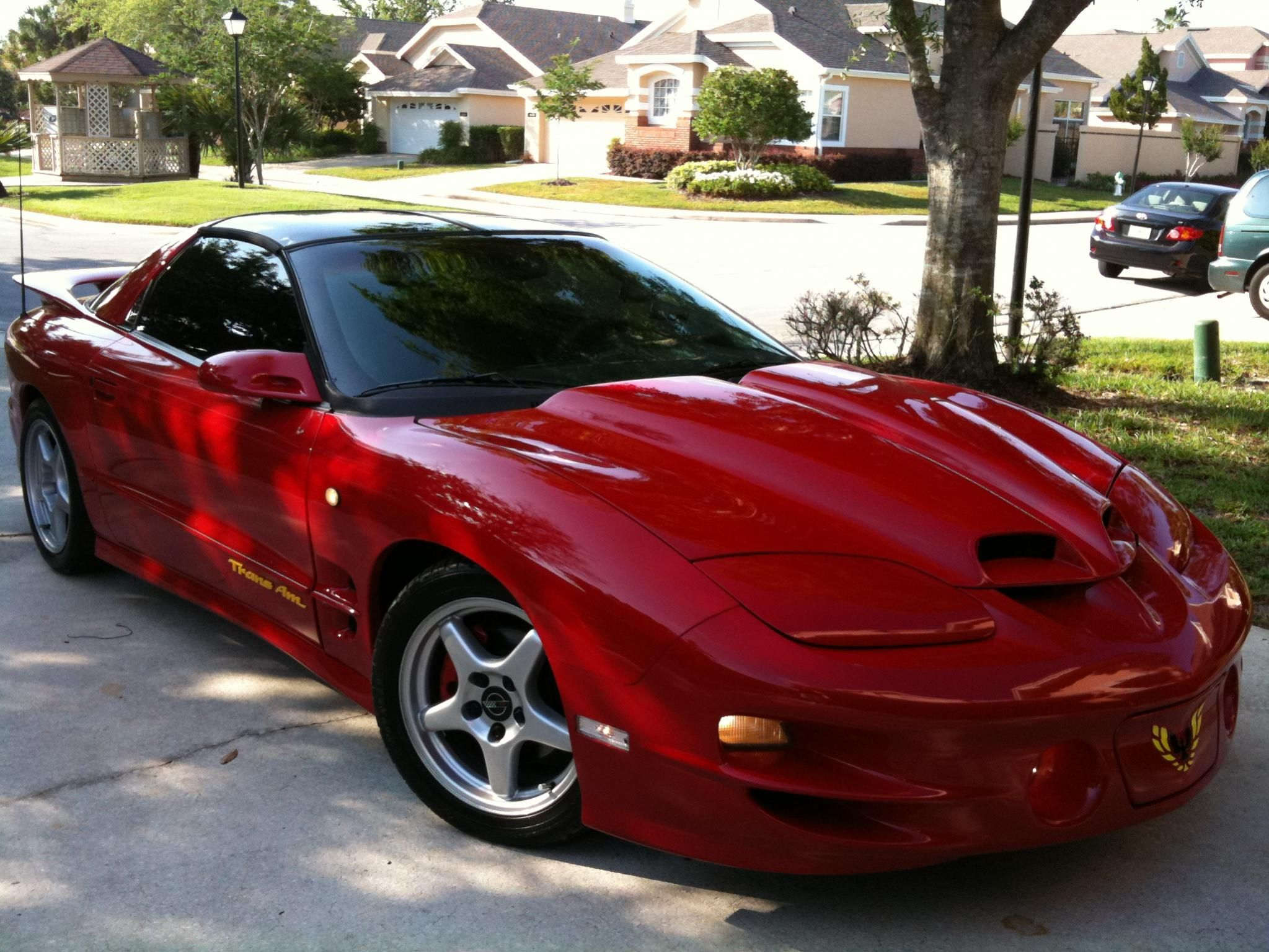 1998 pontiac trans am ws6 muscle cars pontiac trans. Black Bedroom Furniture Sets. Home Design Ideas