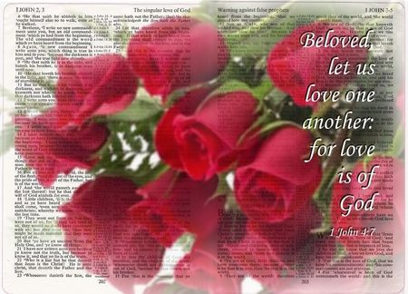 Image result for I john 4:7 roses with Scripture