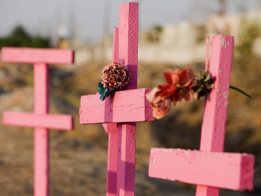 Crosses erected in Ciudad Juarez for the more than 600 women, mostly poor factory workers, who have been raped, tortured and murdered in the city since 1993.