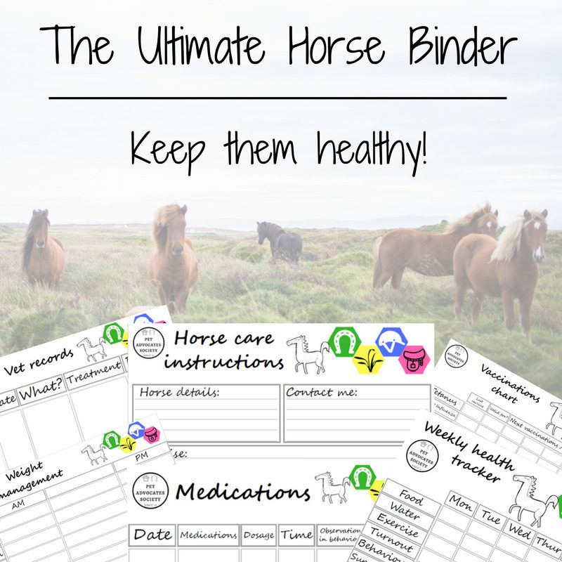 Ultimate Horse Binder, Pet Care Kit, Horse Planner, Health