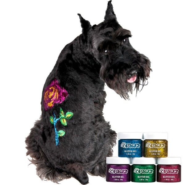 Pin By Susan Rendon On Opawz Creative Grooming Creative Grooming Dog Grooming Supplies Dog Hair Dye