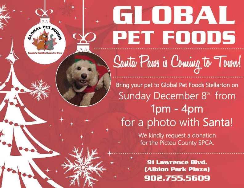 Global Pet Foods Pictures With Santa