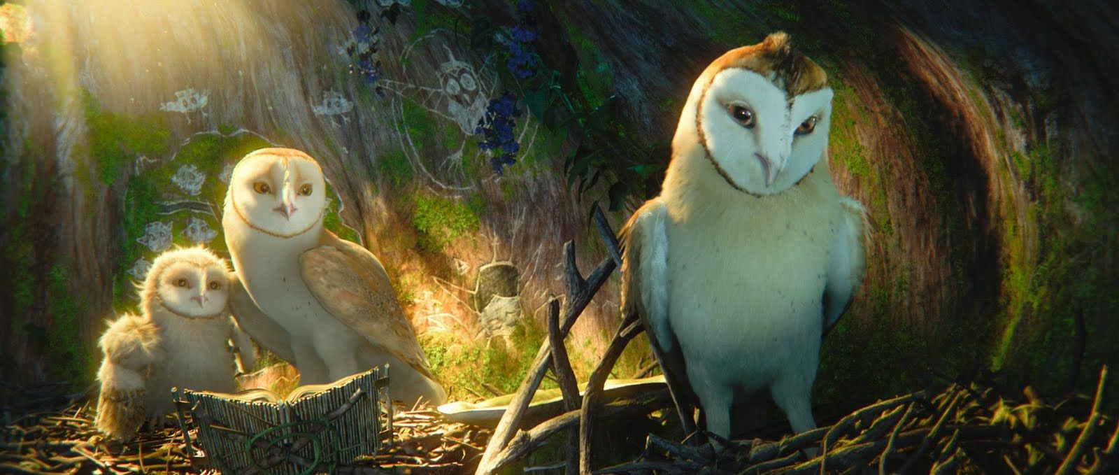 Hộ Vệ Xứ Gahoole - Legend Of The Guardians: The Owls Of Ga&#39hoole