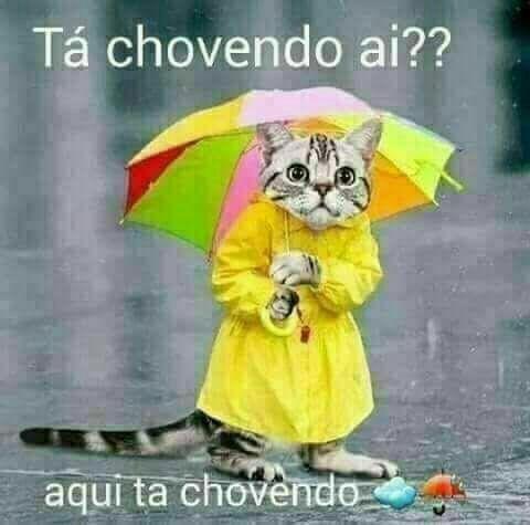 Pra Caraca Bom Dia De Chuva Dia Chuvoso Imagens Ta