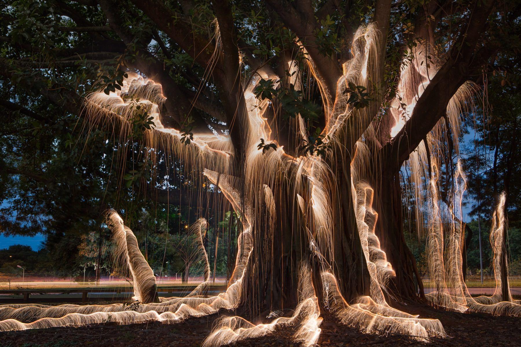 Encantador Sherman Oaks Encuadre Galería - Ideas Personalizadas de ...
