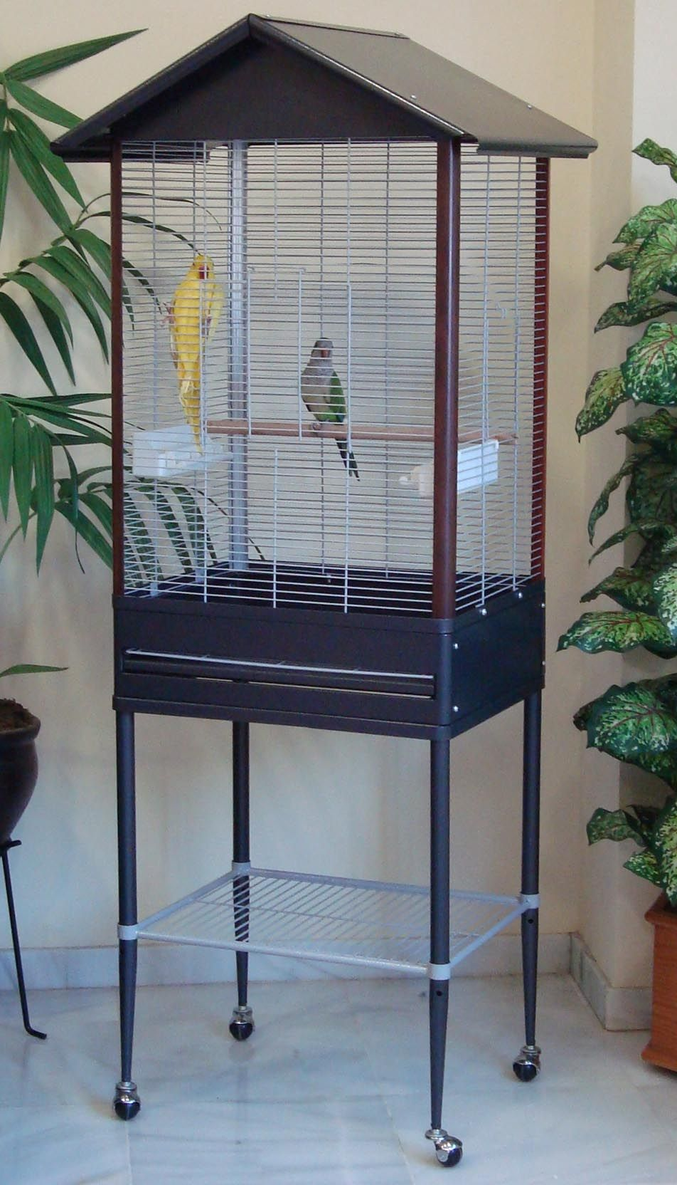 Venta Online De Jaulas Y Accesorios Para Aves Pajareras Loritos 812 Pajareras Es Tienda On Line De Jaulas Y Acc Jaula Para Loros Jaulas Jaulas De Pajaros