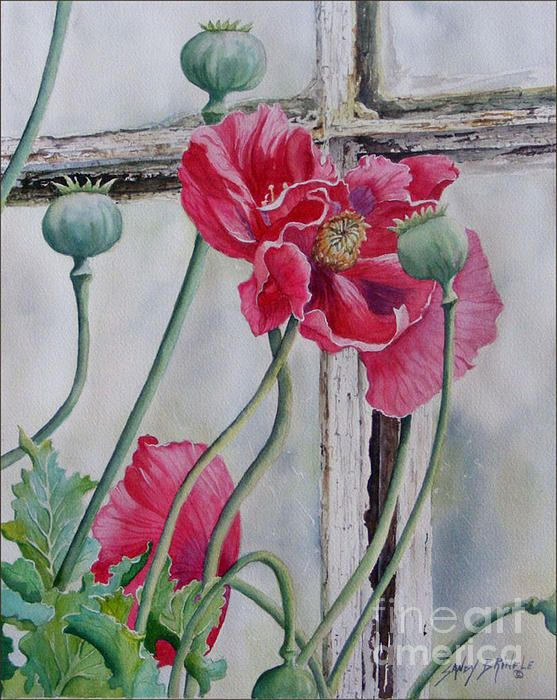 California Dreamers Sold by Sandy Brindle | Watercolor ...