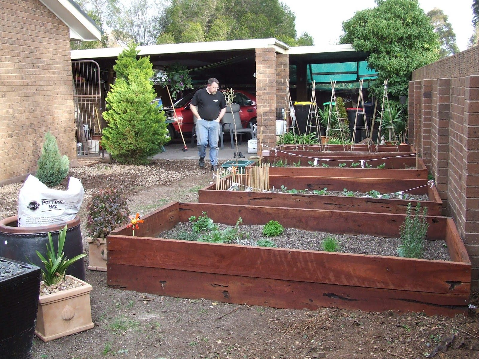 My mother in law Pam, recently asked how I made the garden beds in my veggie patch. This is the story of how I did it! In late April 2007, I began to plan an organic vegetable garden for one side of our house. We had a garden (if you could call it that), that [Continue Reading …]