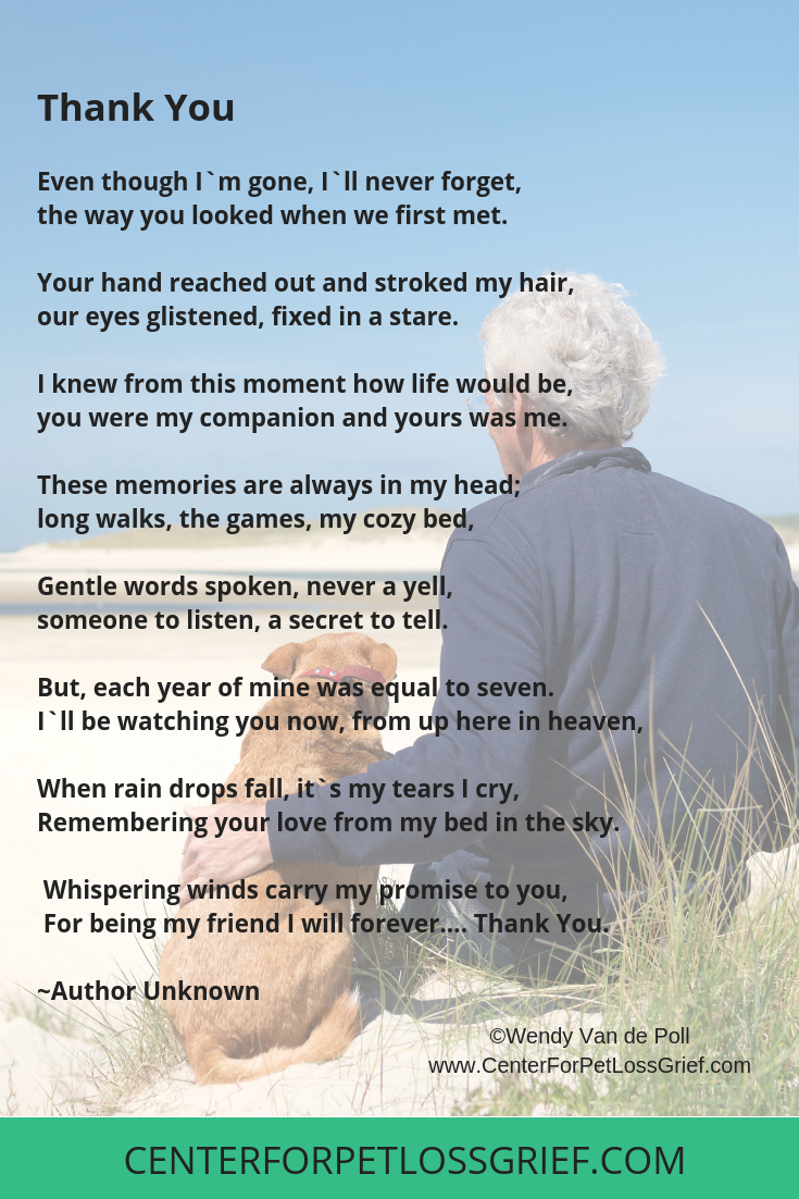 Pet Loss Poems To Heal Your Heart And Soul Center For Pet Loss Grief Pet Loss Grief Pet Loss Poem Pet Loss