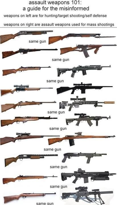 Firearms education for the Low Information Voter | Military guns ...