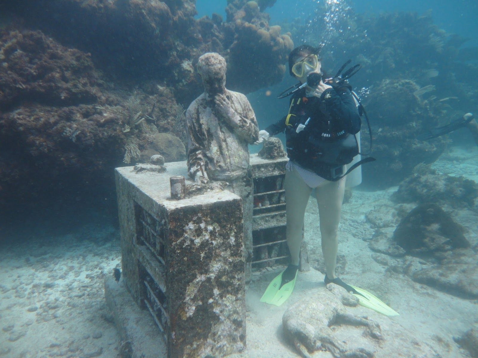 Pin by Gretchen Collis on Underwater photography   Pinterest