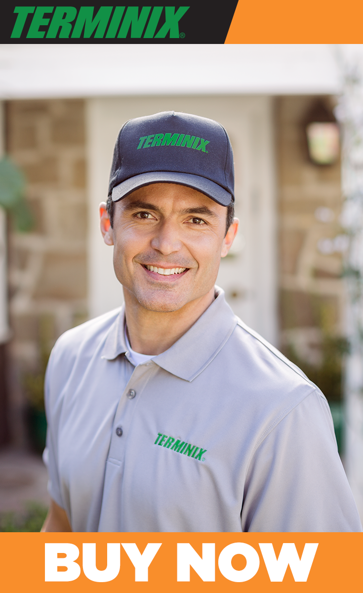 We'll do whatever it takes to solve your pest problem