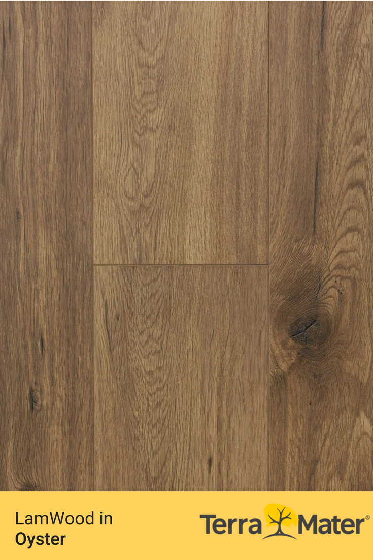 Lamwood By Terra Mater Featured In Oyster