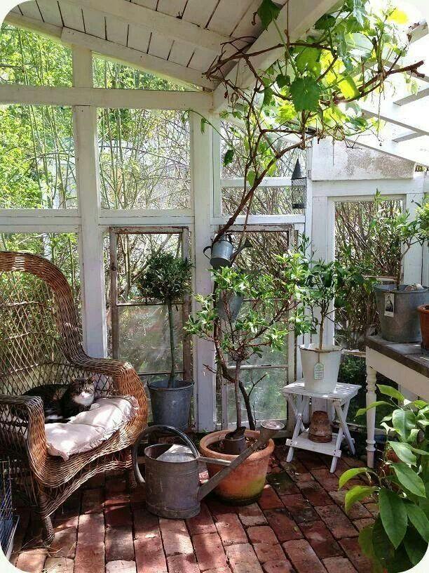 Jardin d\'hiver à l\'ancienne avec sol en briques. | Jardin d ...