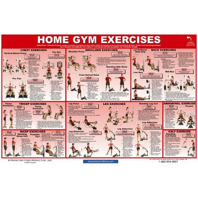 home gym exercise chart  gym workout chart home gym