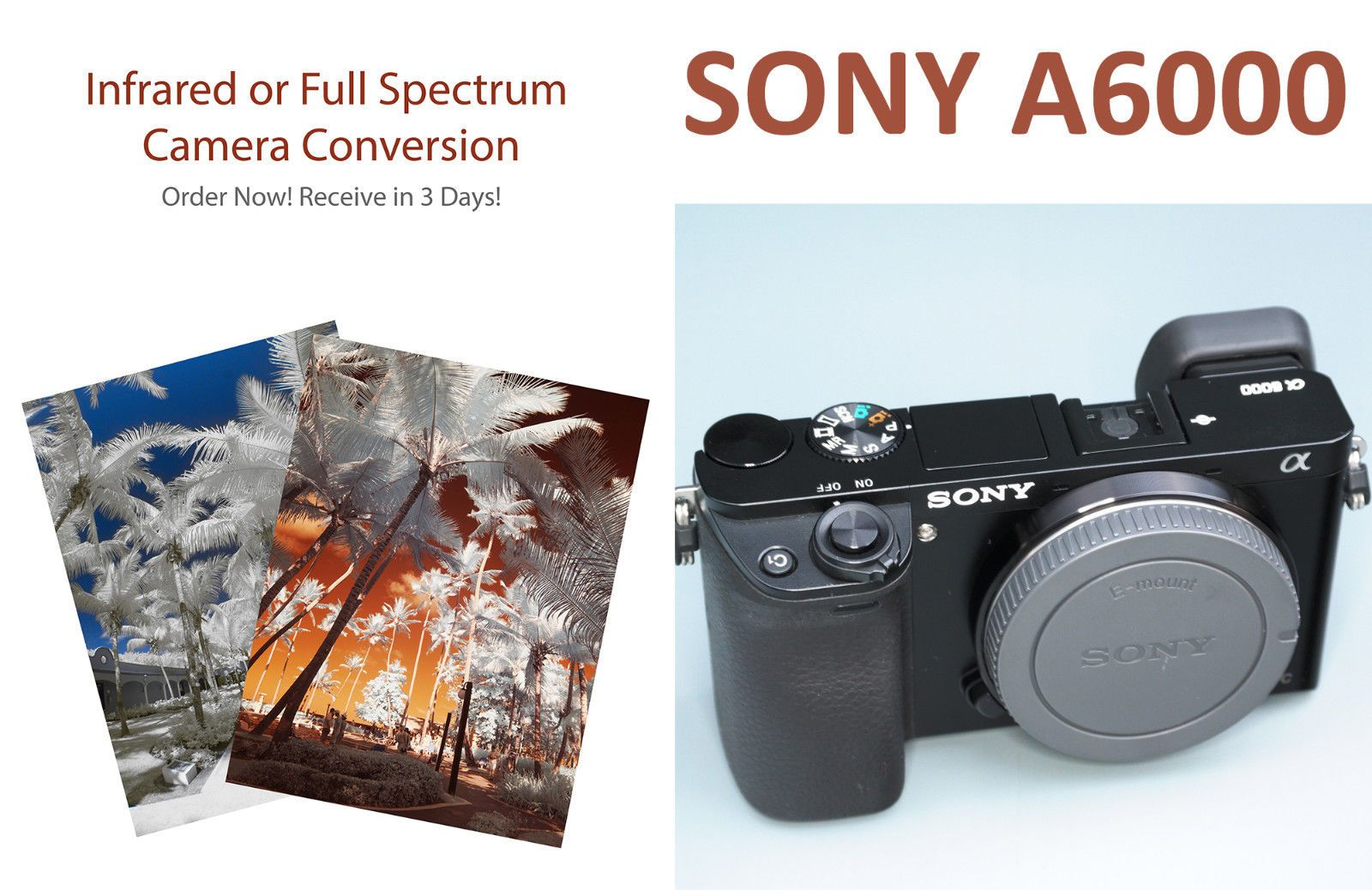 Small Crop Of Sony A6000 Refurbished