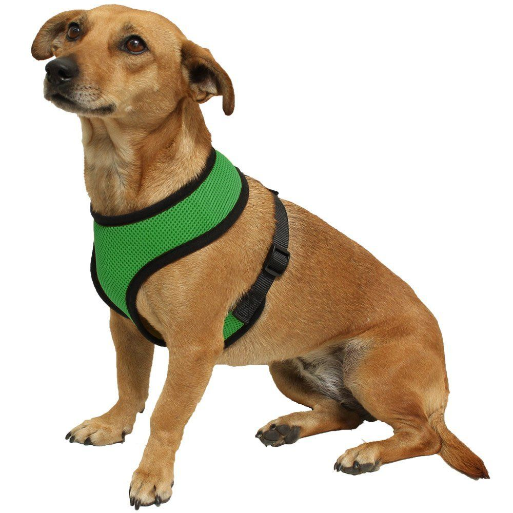 Pet Vest Harnesses Amazon Com Oxgord Pet Control Harness For