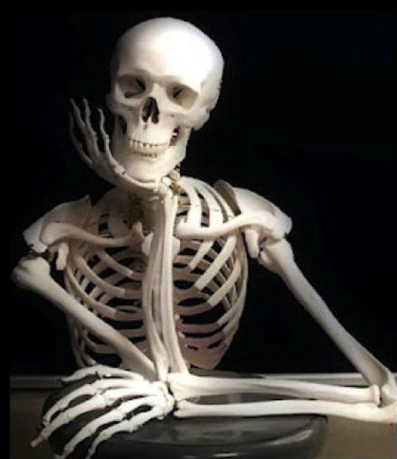 esqueleto-esperando.jpg (560×647) | esqueletos | Pinterest | Yo ...