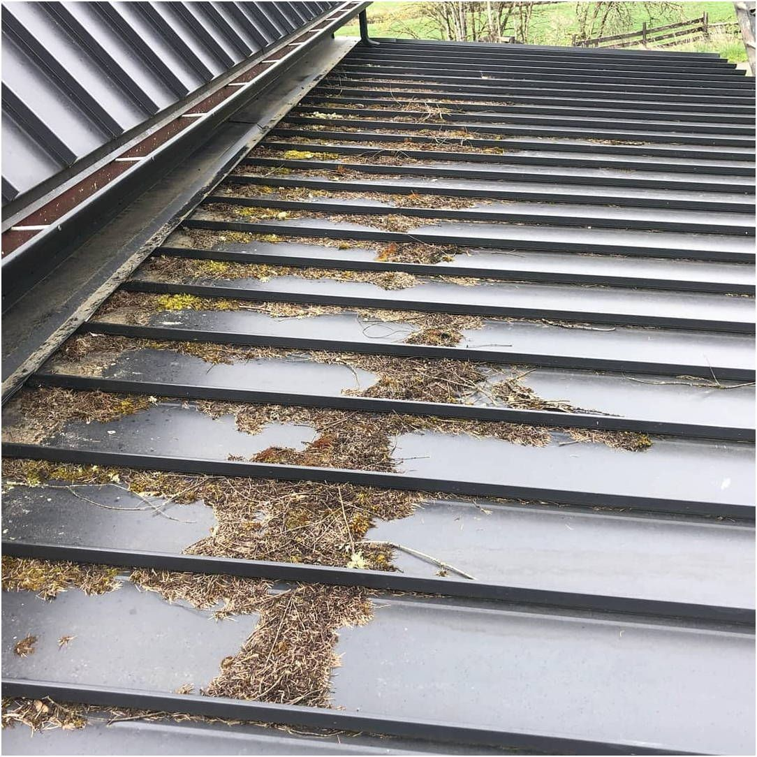 How To Fix A Leaking Roof By Yourself With Images Leaking Roof Roof Galvanized Sheet Metal