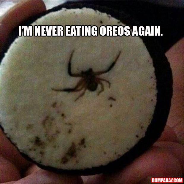 Oreos = Ruined. Ewwwwqwwwwwwwwwww!!!