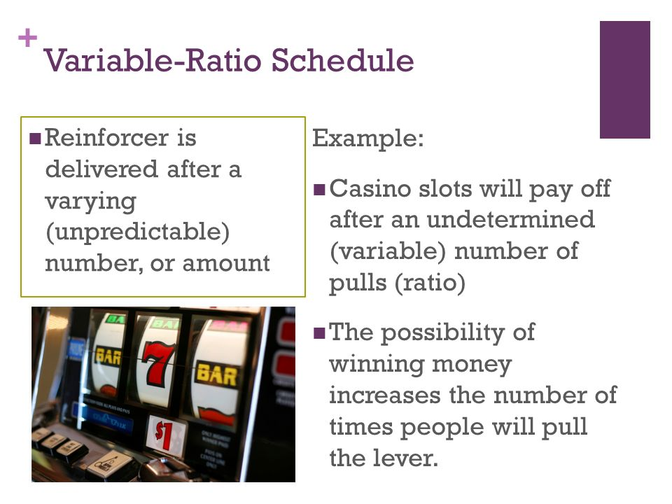 Variable Ratio Scheudle Google Search Reinforcer Casino Slots Variables