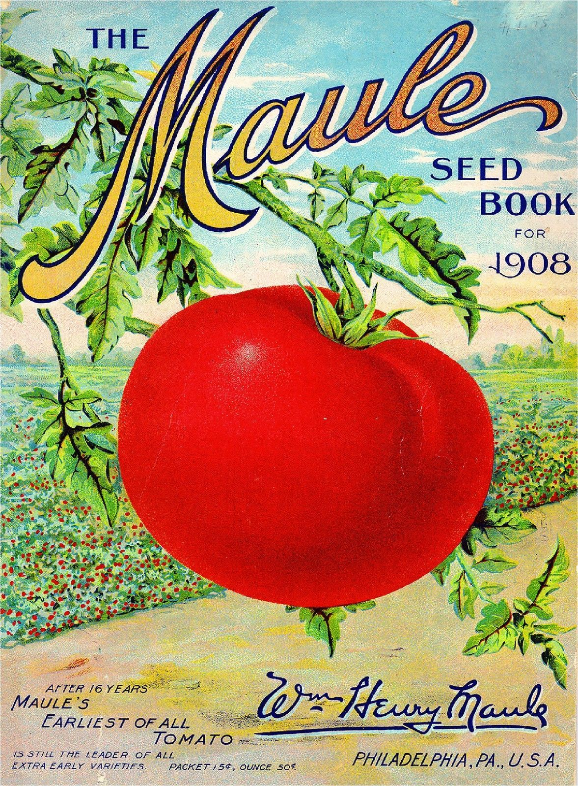 Wholesale Lot of 100 Old Vintage TOMATO Red Cherry Vegetable SEED PACKETS EMPTY