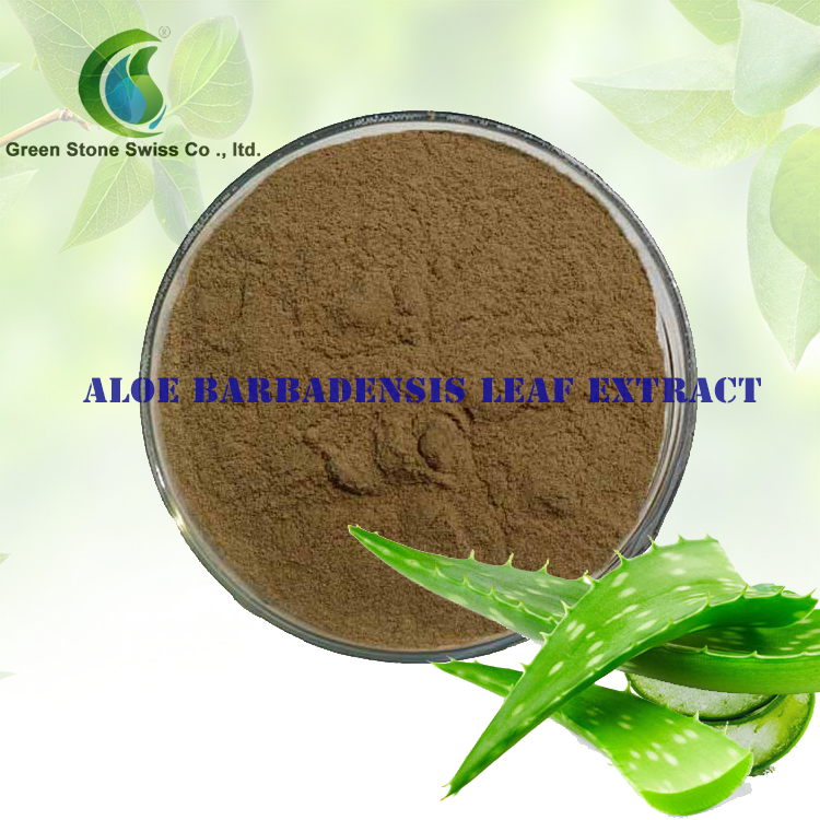 Aloe Barbadensis Leaf Extract Latin Name Aloe Baradersis Mill Appearance Light Yellow Or Yellow Powder Functions Emollient Humectant Oral Care Skin Conditi