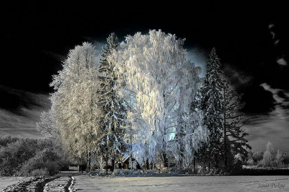 Latvia, winter