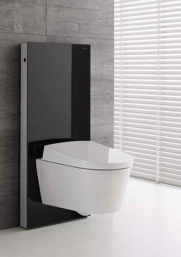 l ment d 39 installation pour toilettes suspendues avec r servoir de chasse d 39 eau monolith. Black Bedroom Furniture Sets. Home Design Ideas