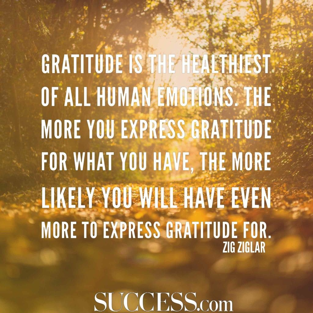 Pin by Kym E Guy on gratitude quotes Gratitude quotes