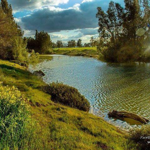 جمال و روعة الطبيعة في المرج شمال شرق ليبيا ليبيا المرج جمال الطبيعة موطني صور نبل ليبيا The Stunning Nature Of Almarj No Water Outdoor Libya