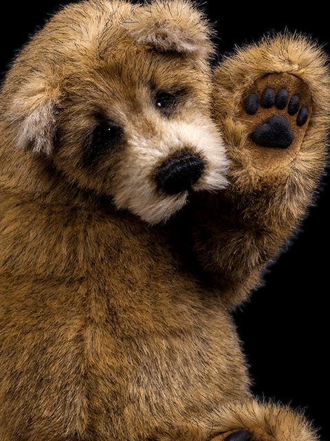 Bears Upon Soar at Silly Bears - New and Vintage Collectable Teddy Bears, Aberdeen, Scotland