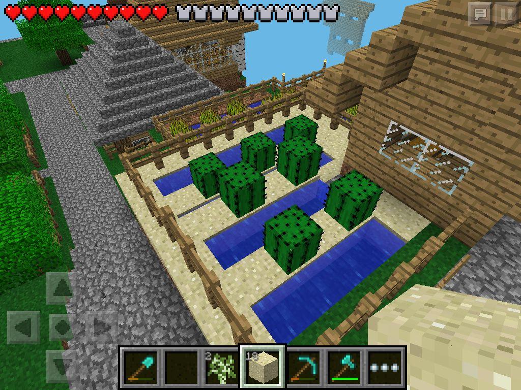 W2) cactus field in Minecraft PE | My Minecraft | Minecraft pe