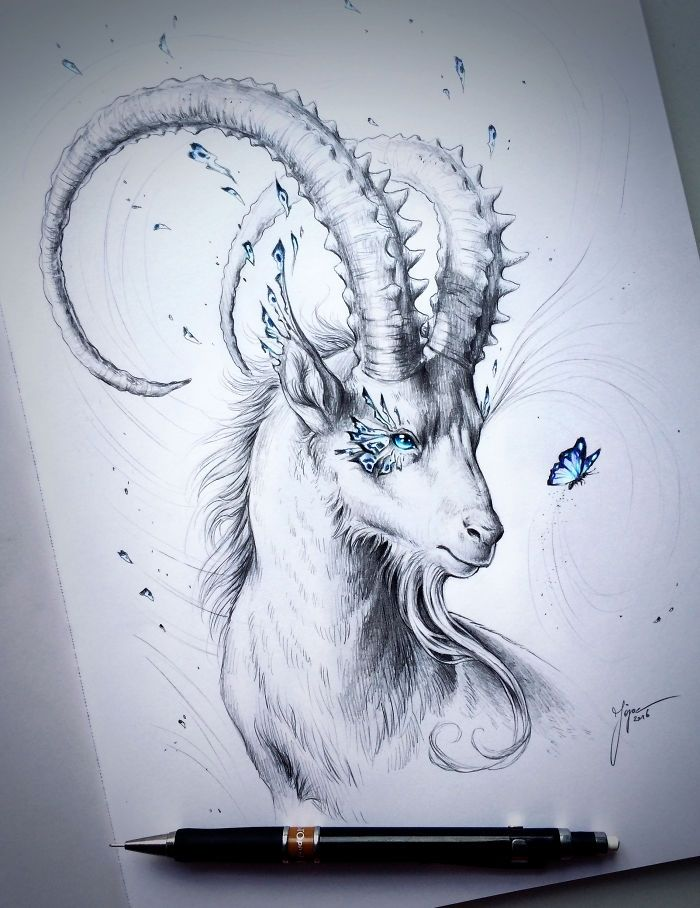 Canvas PICTURE Capricorn Goat Abstract Wall Pictures Nature Art Print Animals Skull