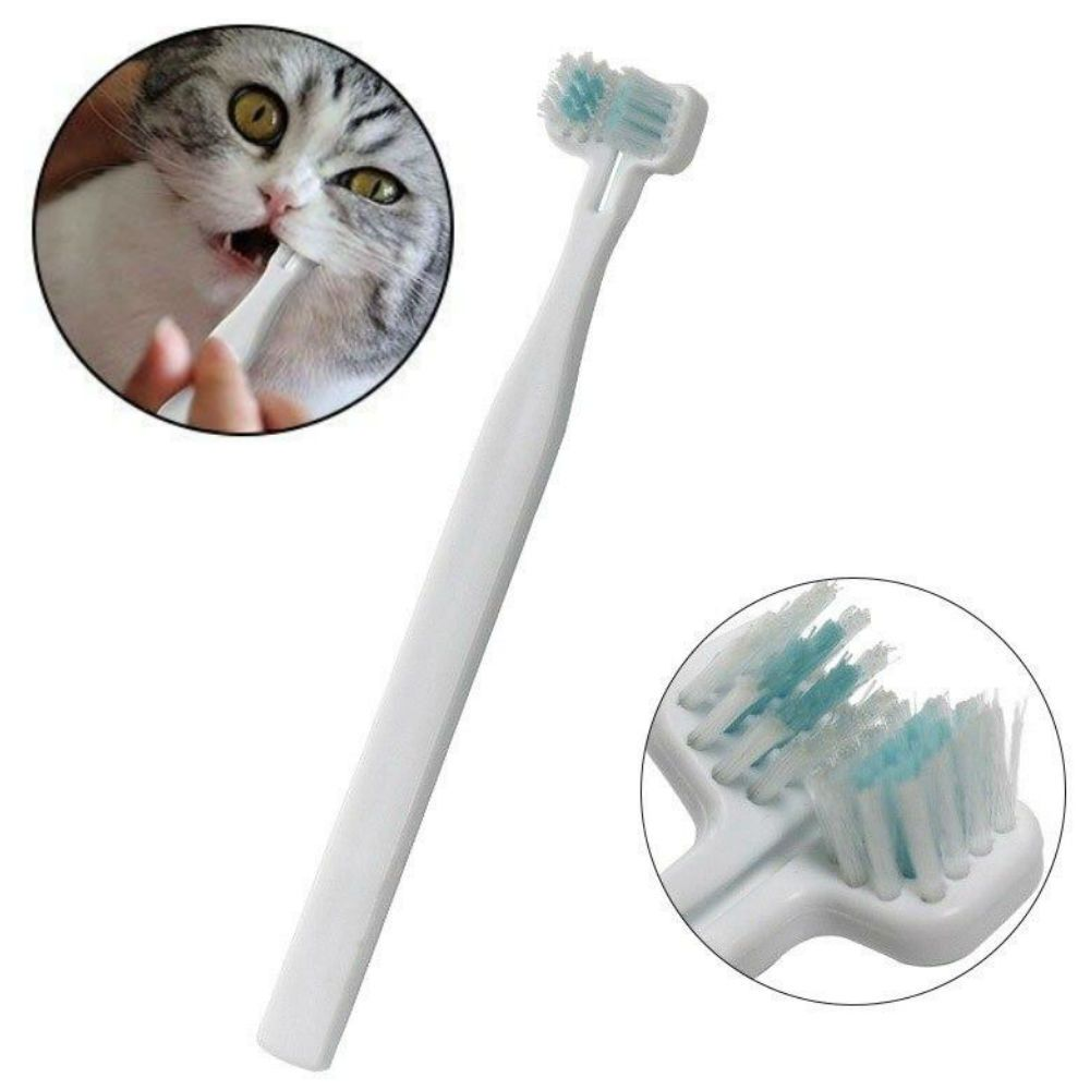 Cat toothbrush pet teeth cleaning dental oral care in 2020